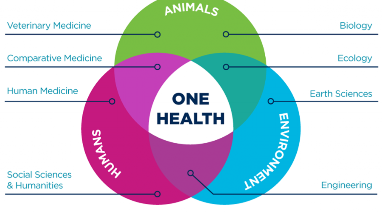 UC Davis OHI One Health Venn Diagram